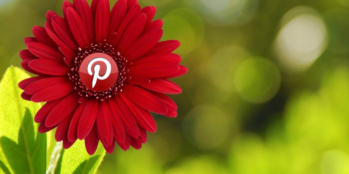 Pinterest For Smalll Business